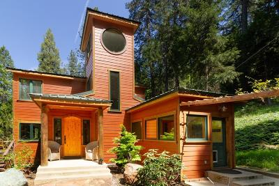 Nevada City Single Family Home For Sale: 11582 North Bloomfield