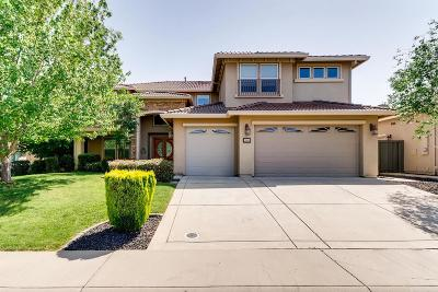 Roseville Single Family Home For Sale: 1869 Morella Circle