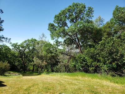 Placerville Residential Lots & Land For Sale: 5 Arrowbee Drive