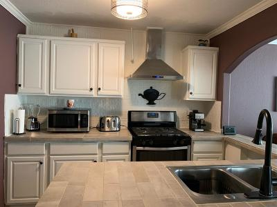 Manteca Single Family Home For Sale: 873 Garden Gate Drive