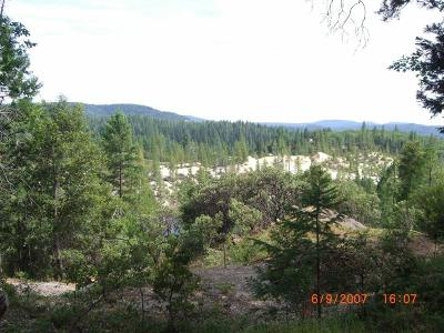 Nevada City Residential Lots & Land For Sale: 13466 Yuba Close