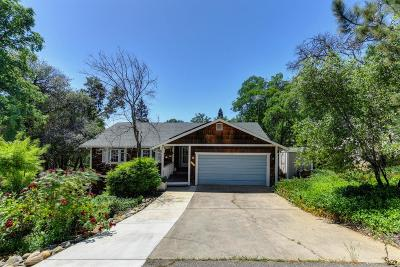 Cameron Park Single Family Home For Sale: 2856 Osborne Road
