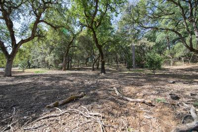 Auburn Residential Lots & Land For Sale: 5505 Stanley Drive