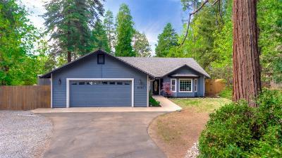Pollock Pines Single Family Home For Sale: 6751 Ridgeway Drive