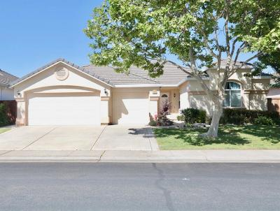 Elk Grove Single Family Home For Sale: 2701 Marina Point Lane
