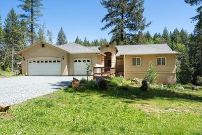 Placerville Single Family Home For Sale: 3601 Deer Park Drive