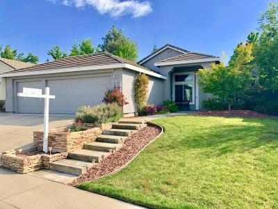 Folsom Single Family Home For Sale: 855 Nichols Circle