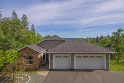 Nevada City Single Family Home For Sale: 15255 One Mile Way
