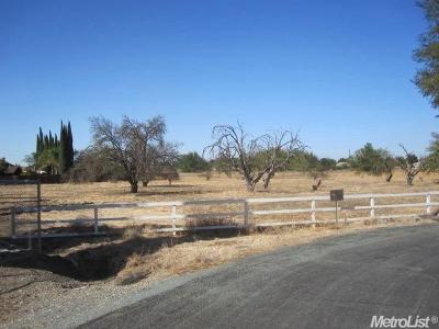 Tracy Residential Lots & Land For Sale: 25723 Ellis Road
