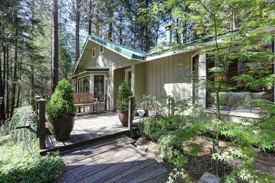 Nevada City Single Family Home For Sale: 17413 Cooper Road