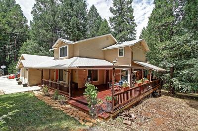 Foresthill Single Family Home For Sale: 4455 Ebberts Ranch Road