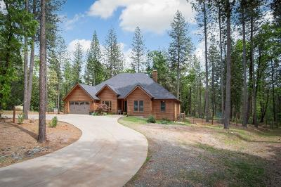 Nevada City Single Family Home For Sale: 10397 Indian Trail