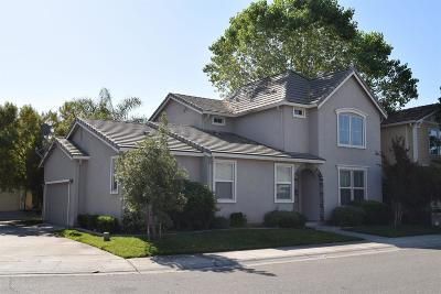Sacramento Single Family Home For Sale: 320 Picasso Circle