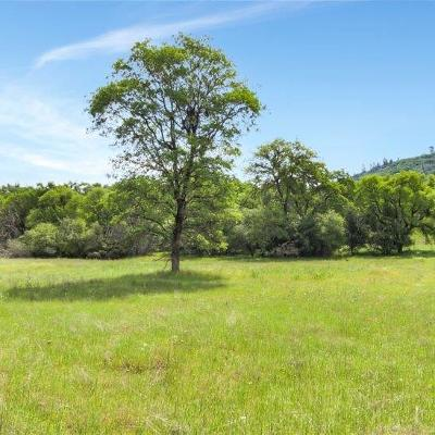 Rescue Residential Lots & Land For Sale: Deer Valley