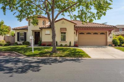 Roseville Single Family Home For Sale: 9215 Pinehurst Drive