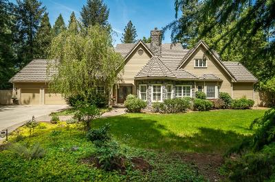 Nevada City Single Family Home For Sale: 13300 Woodstock