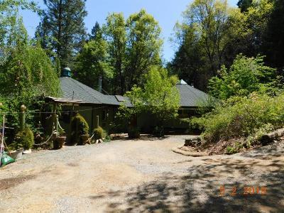 Wilseyville CA Single Family Home For Sale: $472,500