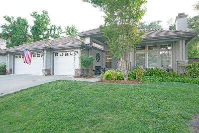 El Dorado Hills Single Family Home For Sale: 4156 Meadow Wood Drive