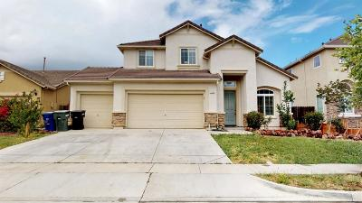 Patterson Single Family Home For Sale: 1353 Cougar Creek Drive