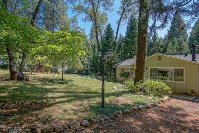 Grass Valley Single Family Home For Sale: 15225 Meadow Drive