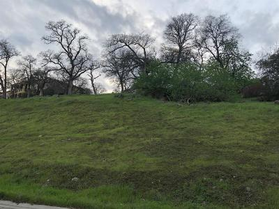 El Dorado Hills Residential Lots & Land For Sale: 3482 Park Drive