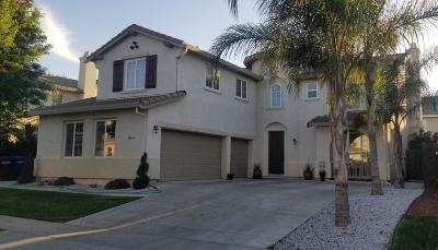 Patterson Single Family Home For Sale: 451 Squash Creek Lane