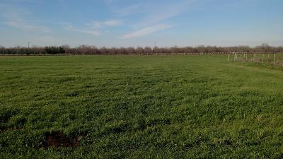 Stockton Residential Lots & Land For Sale: 18882 East Gawne Road