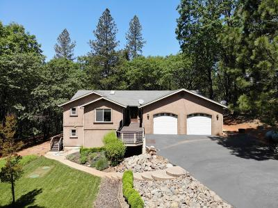 Grass Valley Single Family Home For Sale: 10790 Alta Sierra Drive
