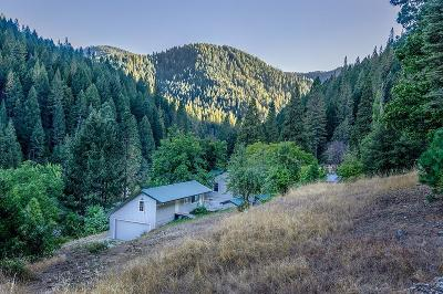 Sierra County Single Family Home For Sale: 131 Gold Bluff Road