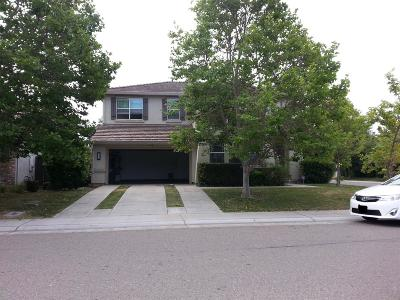 Elk Grove Single Family Home For Sale: 2300 Bastona Drive