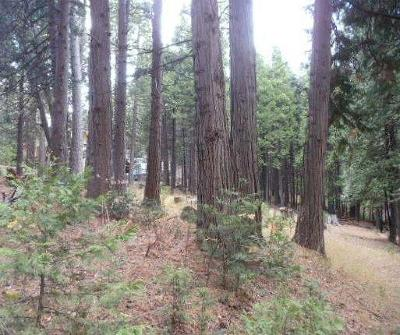 Residential Lots & Land For Sale: 1840 Antler Drive