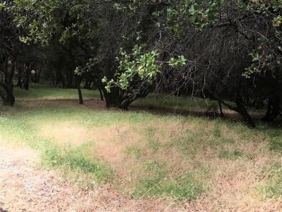 Penn Valley Residential Lots & Land For Sale: 20412 Chaparral Circle