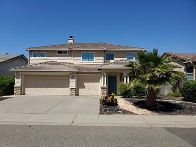 Elk Grove Single Family Home For Sale: 9003 Harvest Hill Way