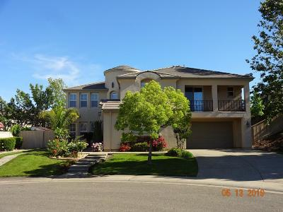 Folsom Single Family Home For Sale: 1132 Blue Heron Court