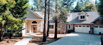 Placer County Single Family Home For Sale: 650 East Weimar Cross Road