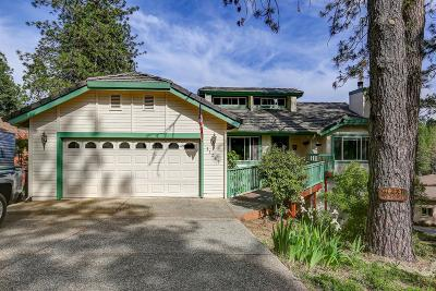 Grass Valley Single Family Home For Sale: 11387 Lower Circle Drive