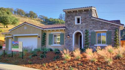 El Dorado Hills Single Family Home For Sale: 8125 Trevi Way