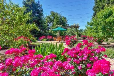 Sacramento Residential Lots & Land For Sale: 10 Latham Lane