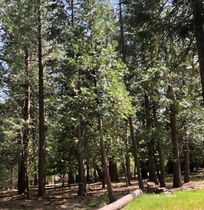 Pollock Pines Residential Lots & Land For Sale: 4596 Sierra Springs Drive
