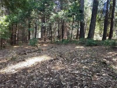 Residential Lots & Land For Sale: 4904 Coralaine Drive