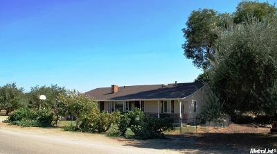 Manteca Single Family Home For Sale: 2350 Coelho Road