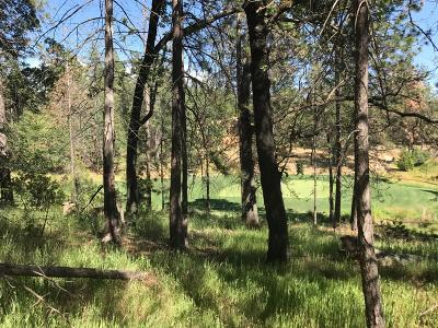 Meadow Vista Residential Lots & Land For Sale: 1602 The Point- Lot 294