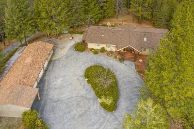 Nevada County Single Family Home For Sale: 14885 Christmas Tree Lane