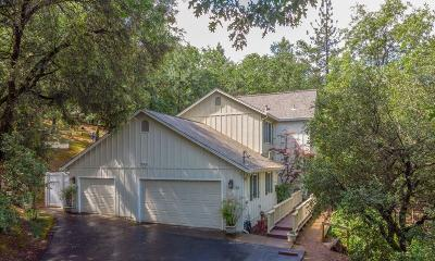 Placerville Single Family Home For Sale: 2283 Big Canyon Creek