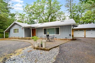 Pioneer Single Family Home For Sale: 15379 Pioneer Volcano Road