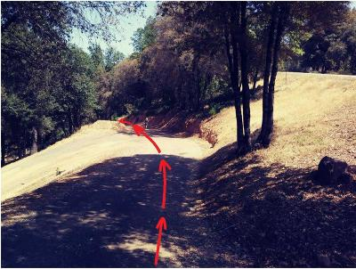 Residential Lots & Land For Sale: Sun Valley Road