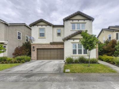 Rocklin Single Family Home For Sale: 5204 Levison Way