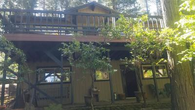 Pollock Pines Single Family Home For Sale: 6080 Speckled