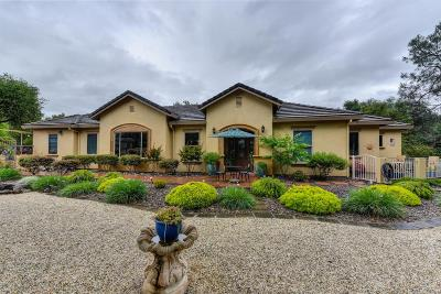 El Dorado Hills Single Family Home For Sale: 1547 Toro Court