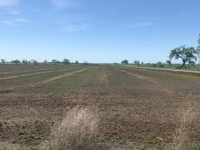 Yolo County Commercial Lots & Land For Sale: Widgeon Avenue